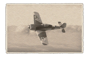fw-190f-8.png