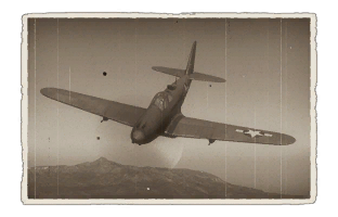 p-63a-5.png