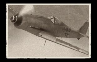 fw-190d-9.png