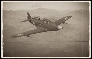 p-39q_25_france.png