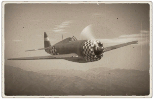 p-47d_22_re.png