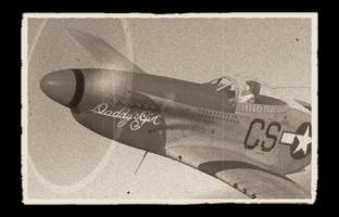 p-51d-10.png